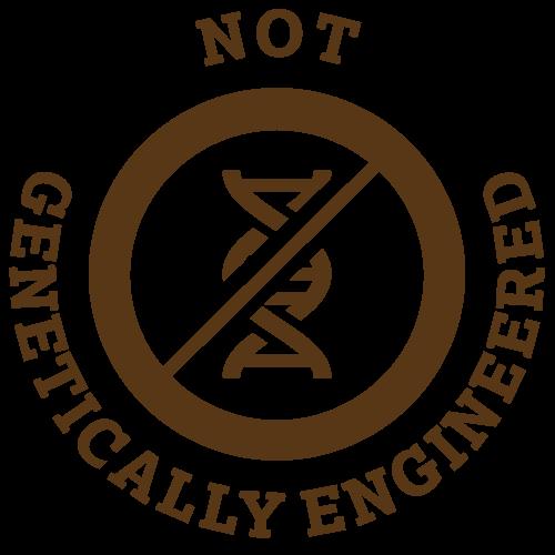 geneticallyengineered_bug