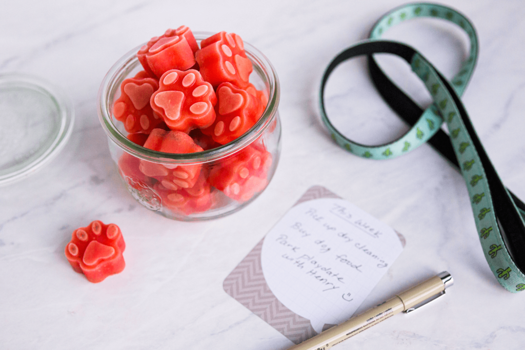 Bosspaws Watermelon Treats