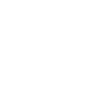 safetyclip